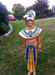 Pic 9 It wasn't really Halloween and the neighbor took a pic of him in her yard