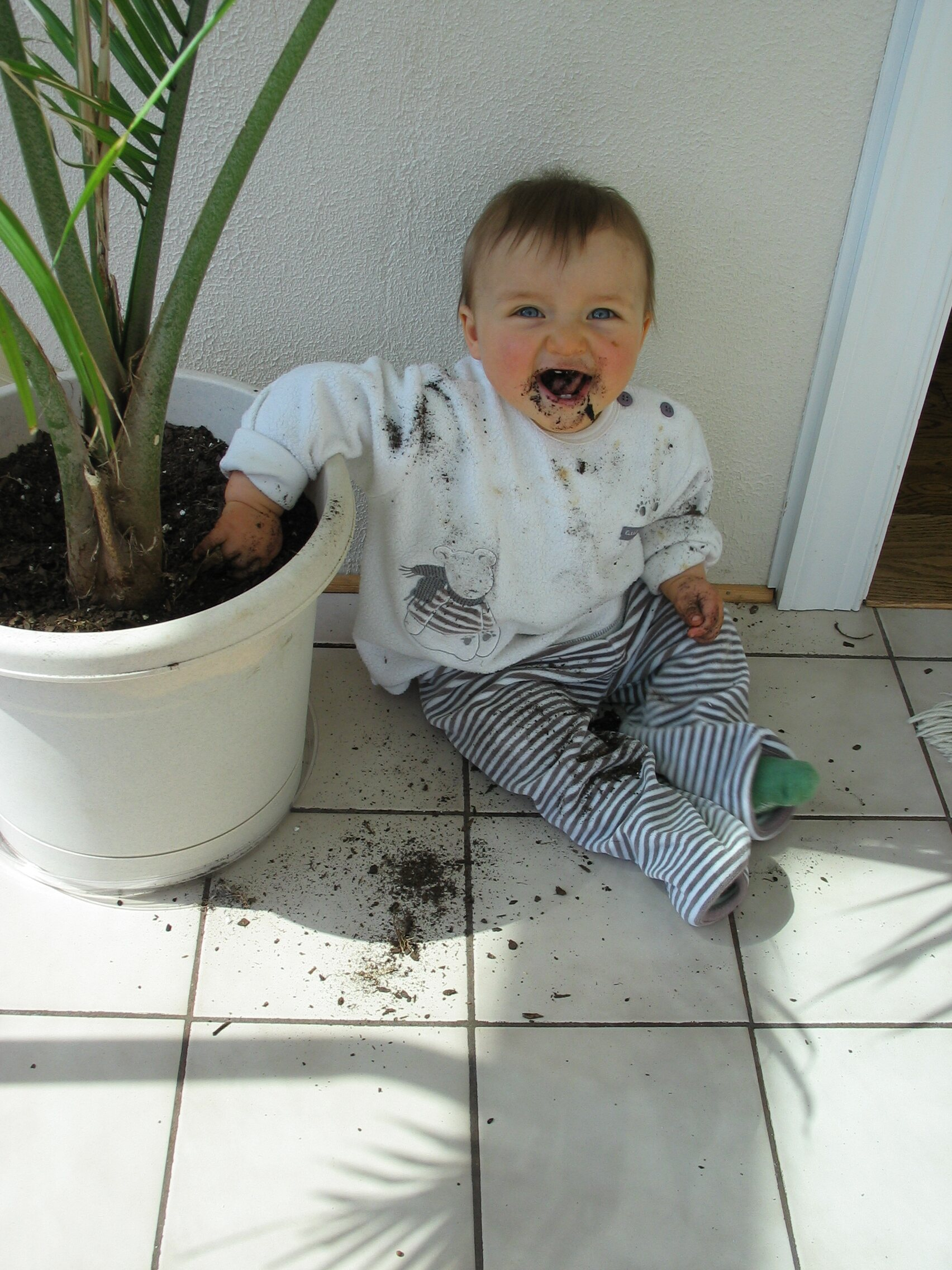 UPS is making grilled cheeses now?